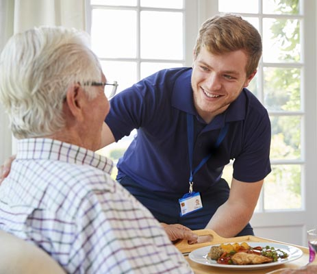 caregivers for the elderly in southeast michigan