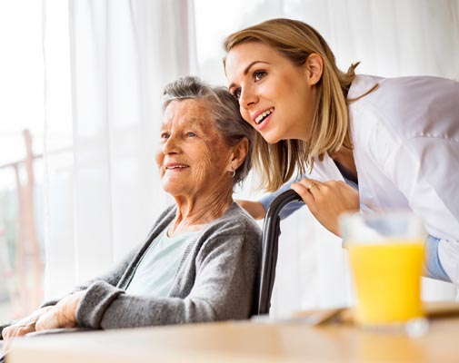 in home care and support for seniors in southeast michigan
