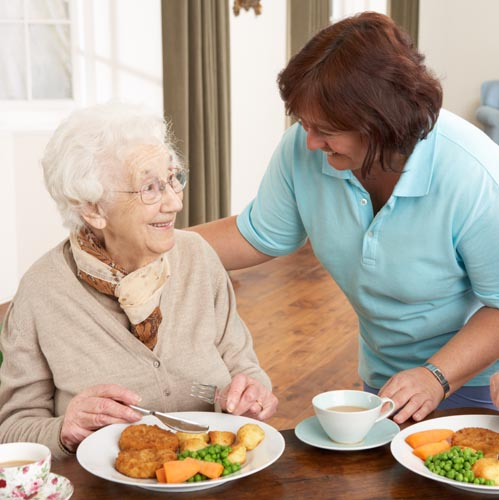 top rated senior care in southeast michigan